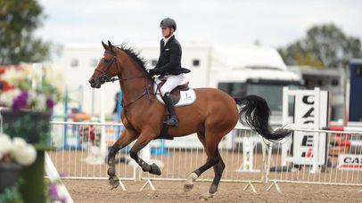 Horse / Rider Boot camp!